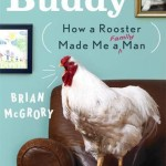 Buddy How A Rooster Made Me a Man by Brian McGrory