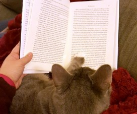 Reading Expatriates with my Cat